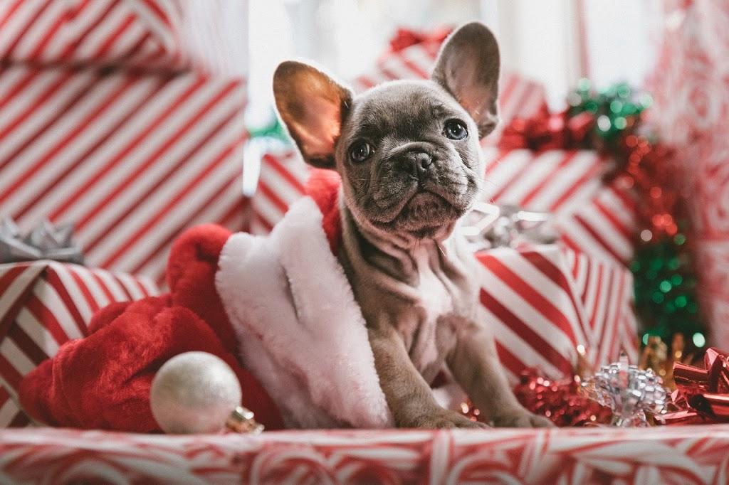 Eettiset lahjat: ihastus vai pettymys?